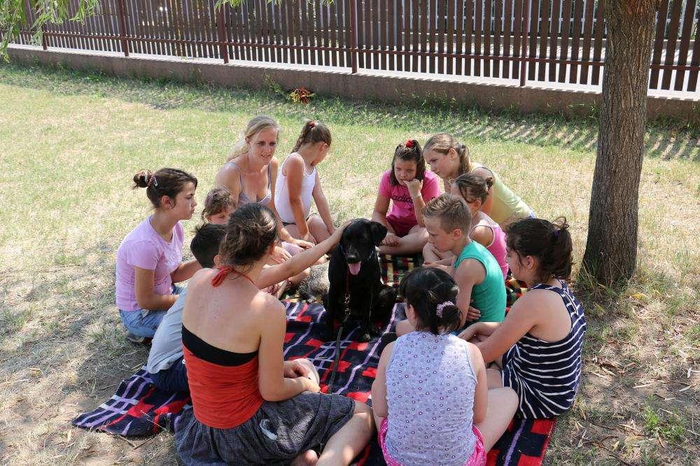 Kutya jó tábor-kutyás mesetábor