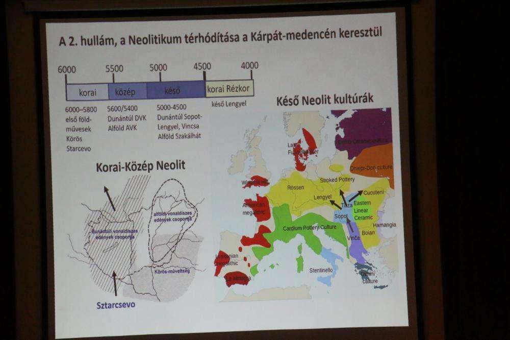 Archeogenetikai vizsgálataink – nemzetközi összehasonlításban