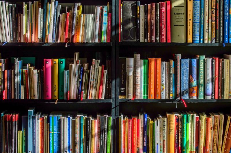 HOMOKKERTI IRODALOM-BIRODALOM: Illusztratív fotó egy könyvespolcról, melyen a legkülönfélébb műalkotások sorakoznak
